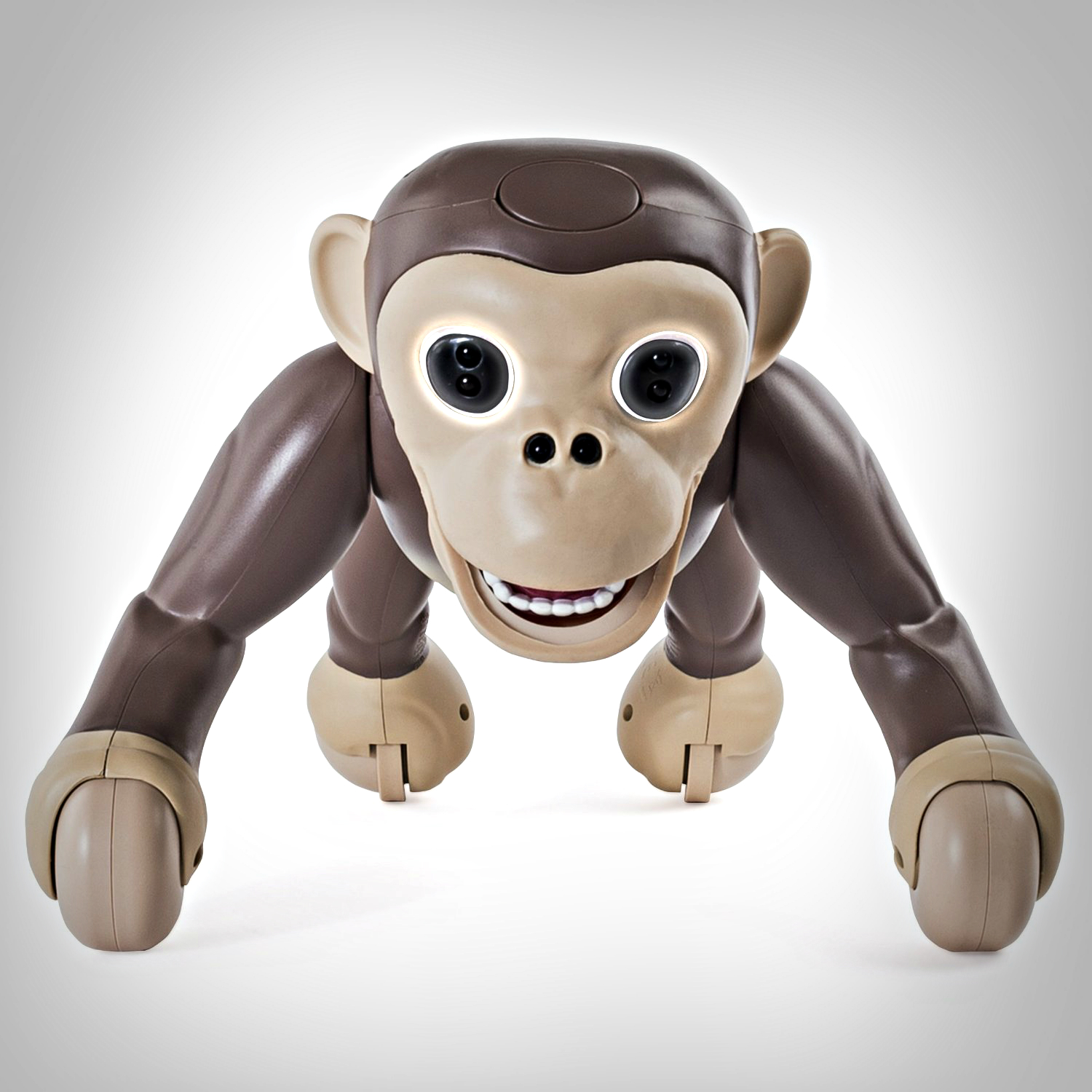 zoomer chimp review