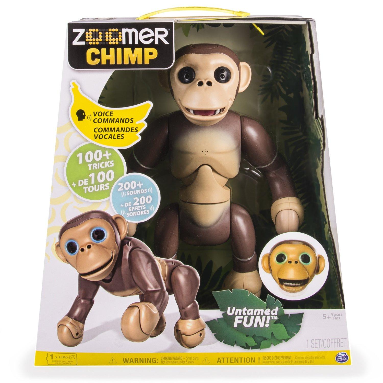 zoomerchimppckg